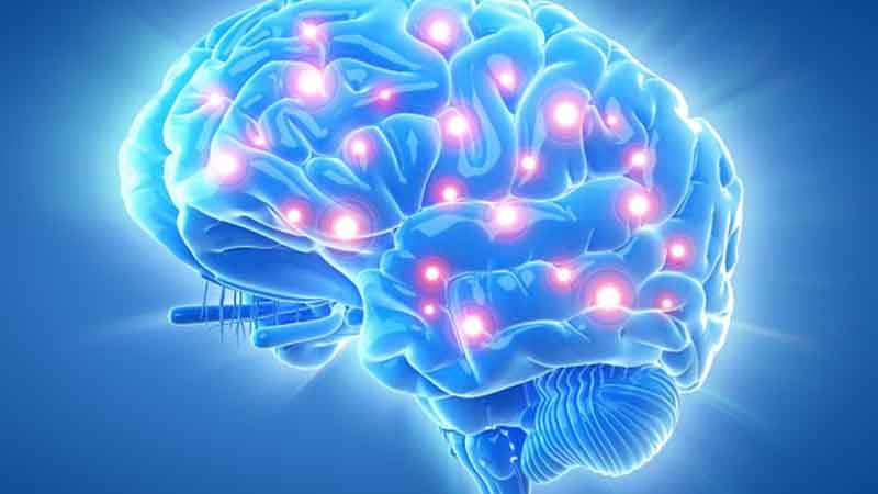Do Memory Supplements Really Work