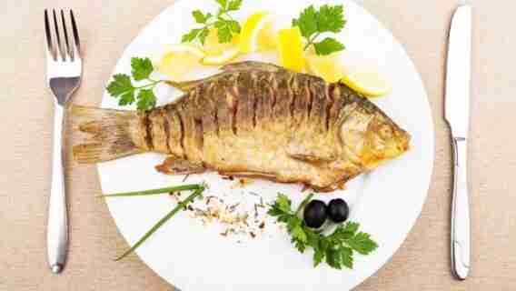 Protein In Fish